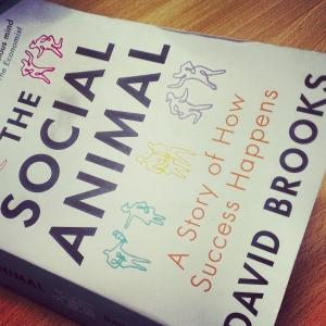 Social Animal, book, entrepreneur, inspiration