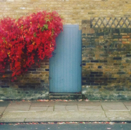 Notes From Another Land | Red leaves gray door